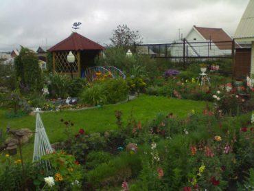 Как приватизировать дачу по садовой книжке?
