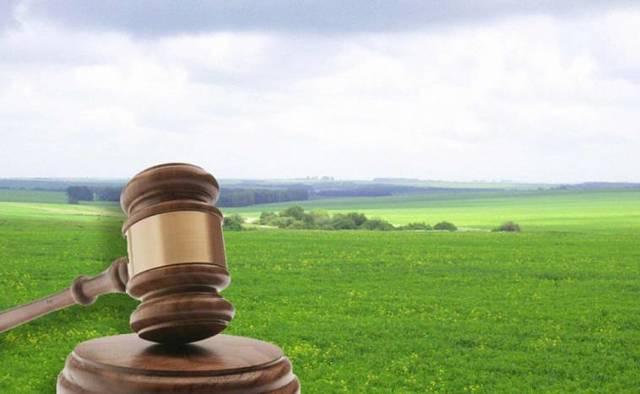 Покупка участка земли под ИЖС — что нужно знать?