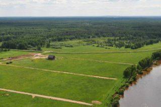 Земельный участок продать или подарить — что выбрать?