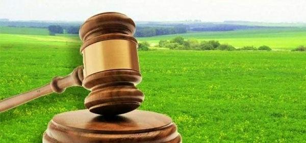 Аукцион на право заключения договора аренды земельного участка — порядок проведения
