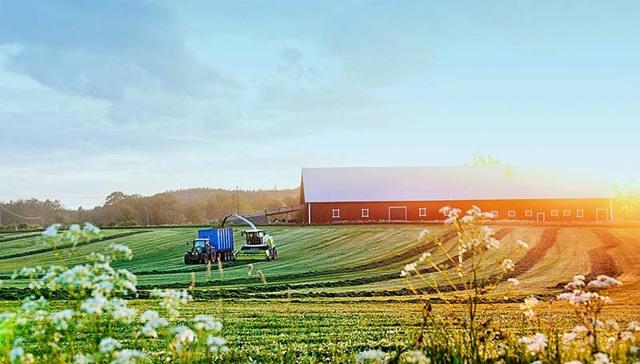 Как получить землю для фермерского хозяйства — порядок предоставления и важные нюансы