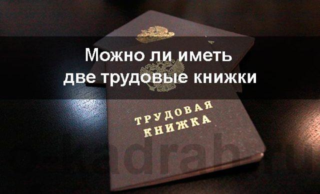 Можно ли иметь две трудовые книжки одновременно согласно ТК РФ?
