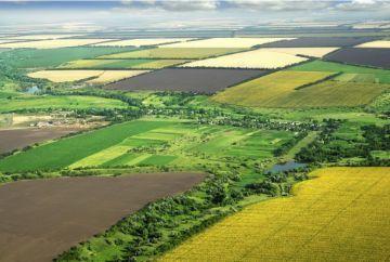 Назначение земель сельскохозяйственного назначения