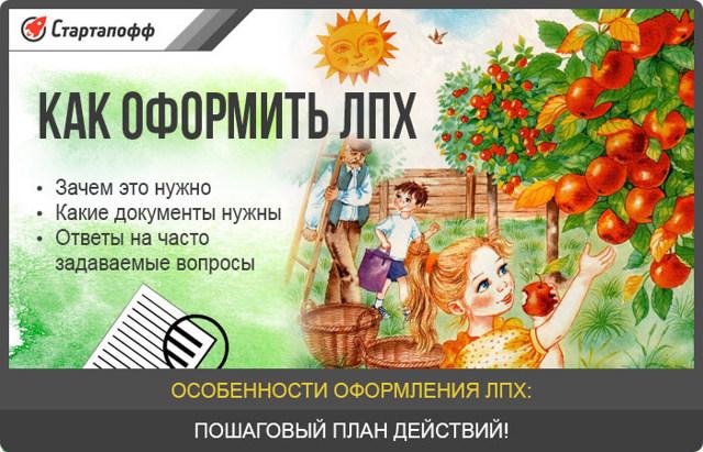 Как получить землю для ЛПХ в России?