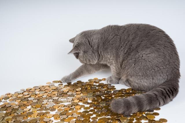 В каком случае платится налог с денежных переводов, поступающих на карту