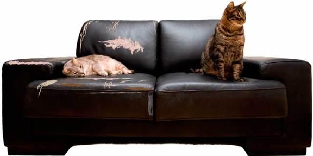 Срок гарантии на мебель по Закону