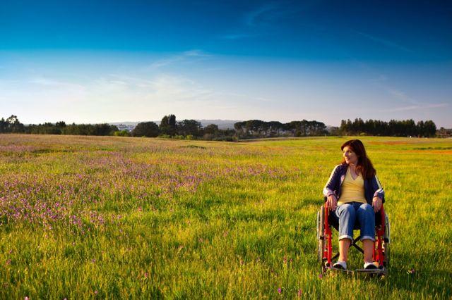 Как получить земельный участок инвалиду 2, 1 или 3 группы