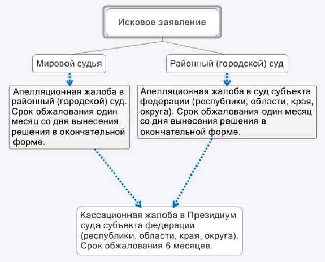 Апелляционная жалоба на решение суда по гражданскому делу: предварительное обращение, порядок составления и образец документа