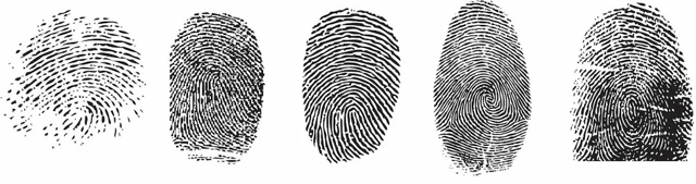 Что это такое биометрические данные: как и для чего они собираются?