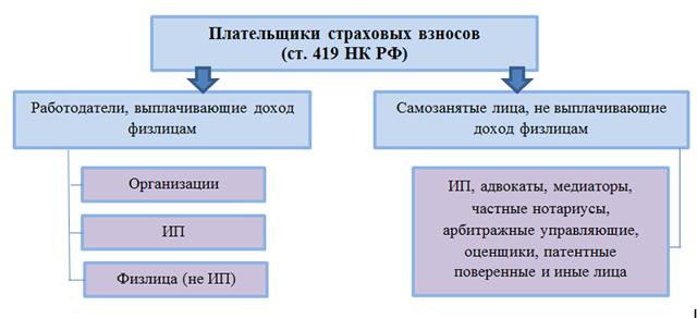 Страховые взносы в ФСС РФ в 2019 году: ставки тарифов, льготы, подтверждение основного вида деятельности