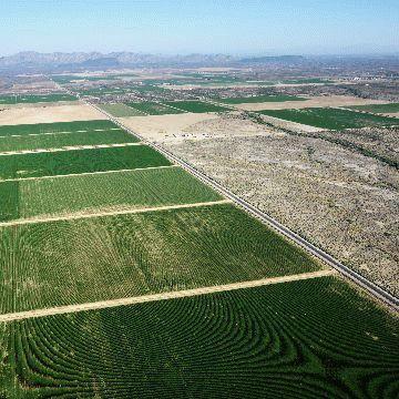 Как производится расчет аренды земельного участка от рыночной или кадастровой стоимости?