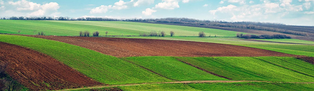 Как правильно оформить договор аренды земельного участка на 11 месяцев?