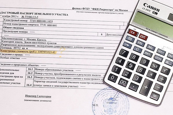 Как получить паспорт земельного участка в Росреестре или МФЦ?