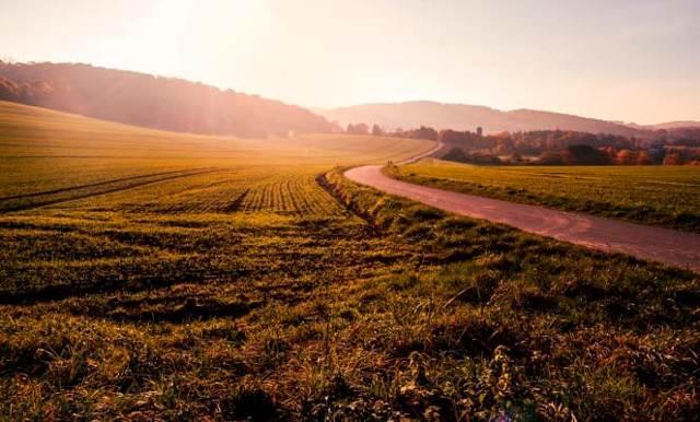 Когда наследование земельных участков не допускается и допускается?