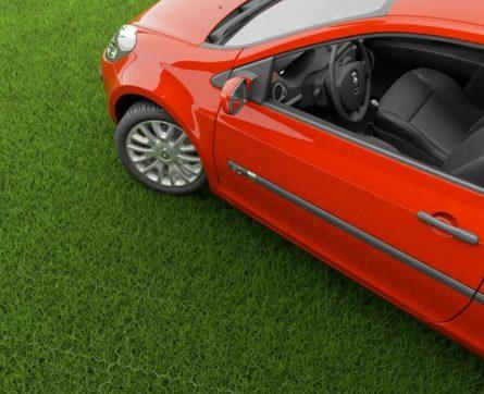 Парковка на газоне: куда можно жаловаться? Образец заявления и порядок его подачи, размеры штрафов