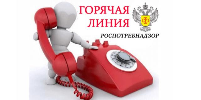 Роспотребнадзор: номера круглосуточных телефонов горячей линии и другие способы связи